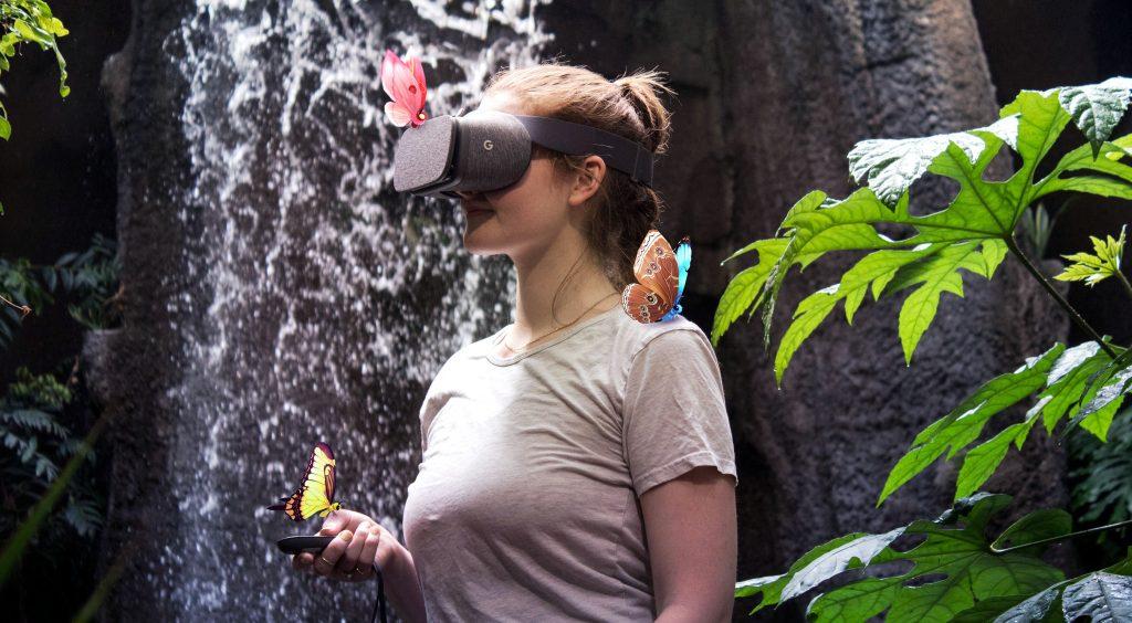 Flutter-VR-Rainforest-Photoshoot